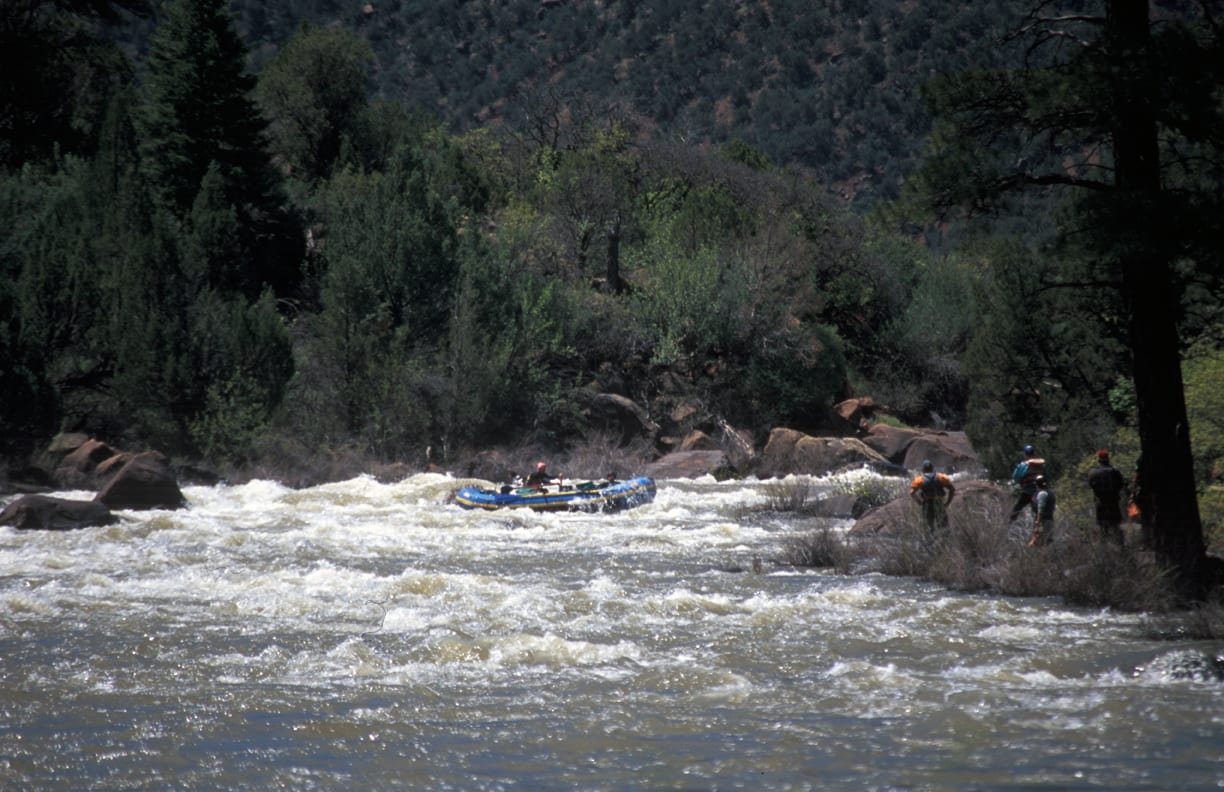 Dolores River Snaggle Tooth Whitewater Rafting Colorado