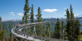 Forest Flyer Mountain Coaster Vail Resorts