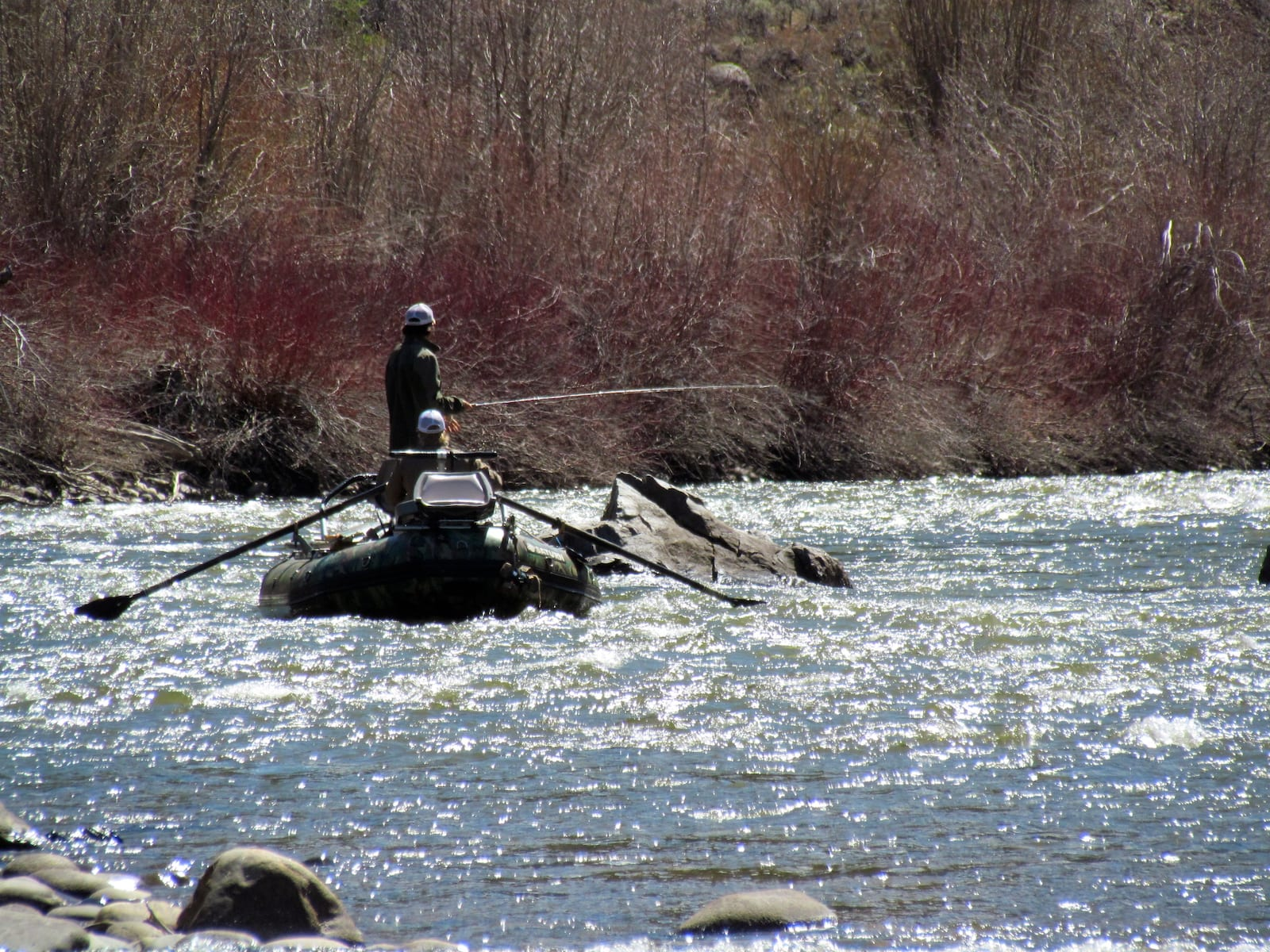 Gunnison River Rafting and Fishing Colorado