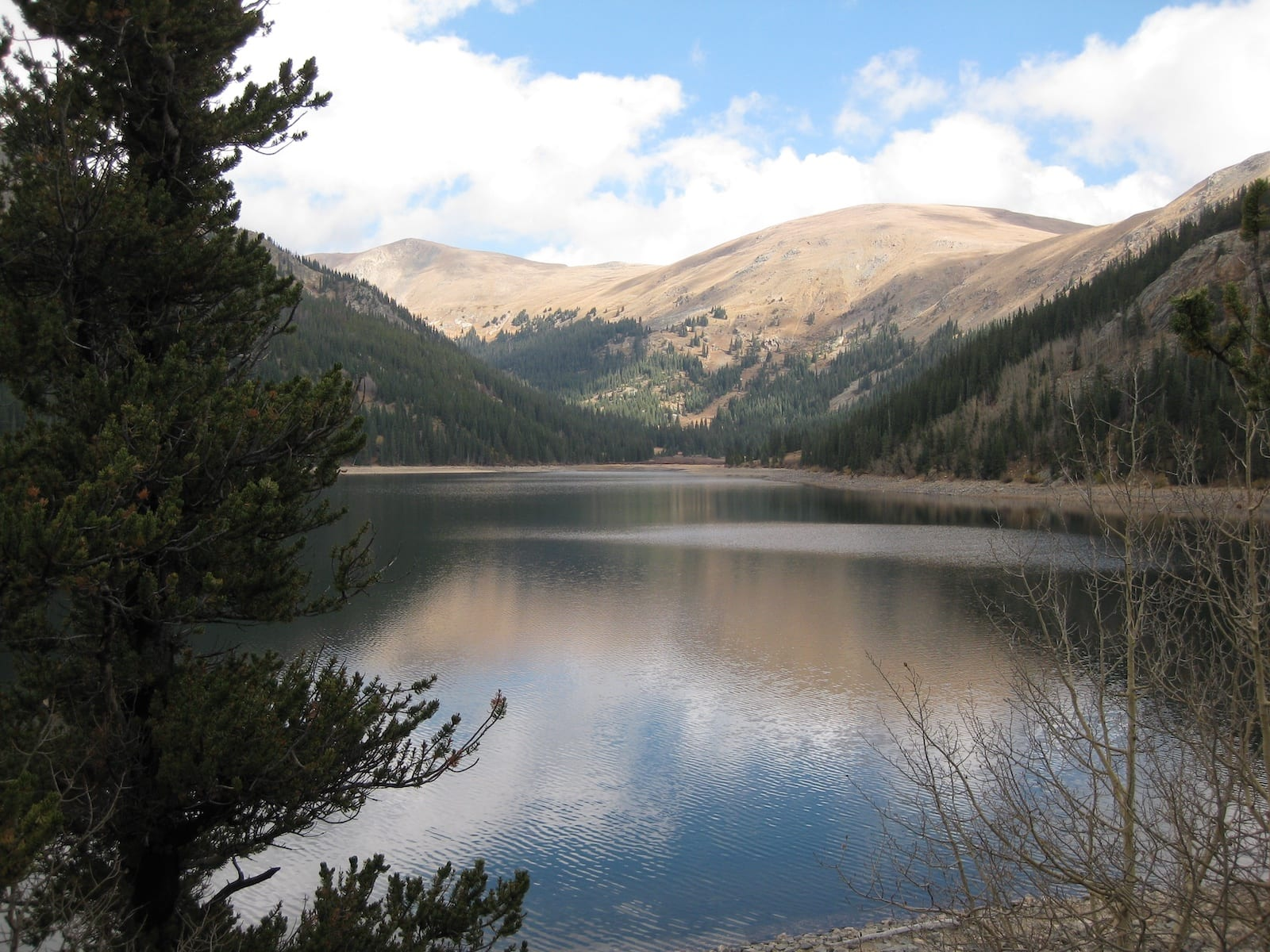 Jefferson Lake Colorado Fall