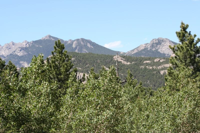Mountain View from Olive Ridge Campground Allenspark CO