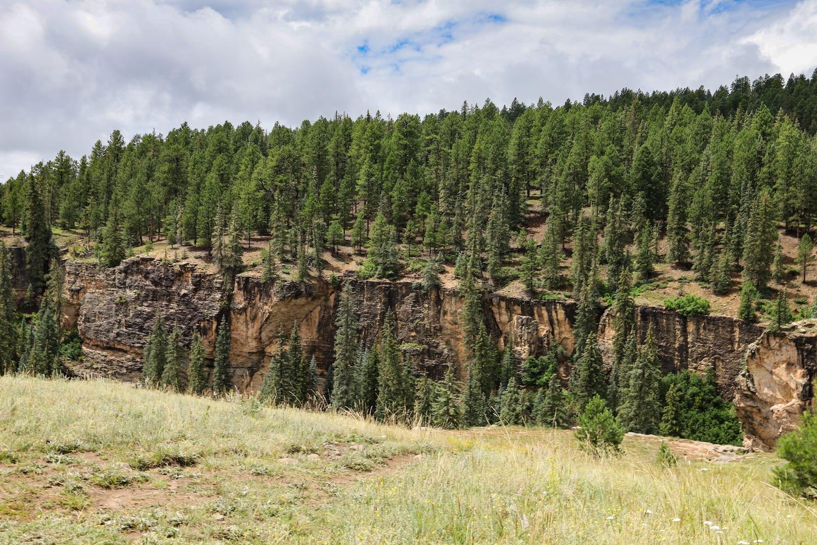Piedra River Canyon Pagosa Springs CO