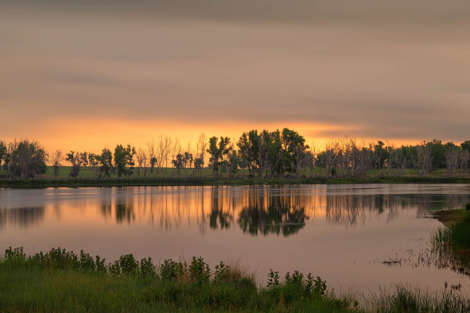 Sunrise Derby Lake in Rocky Mountain Arsenal Commerce City CO