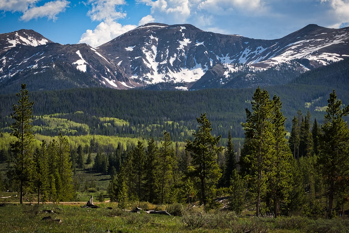 State Forest State Park Medicine Bow Mountain Vista Colorado