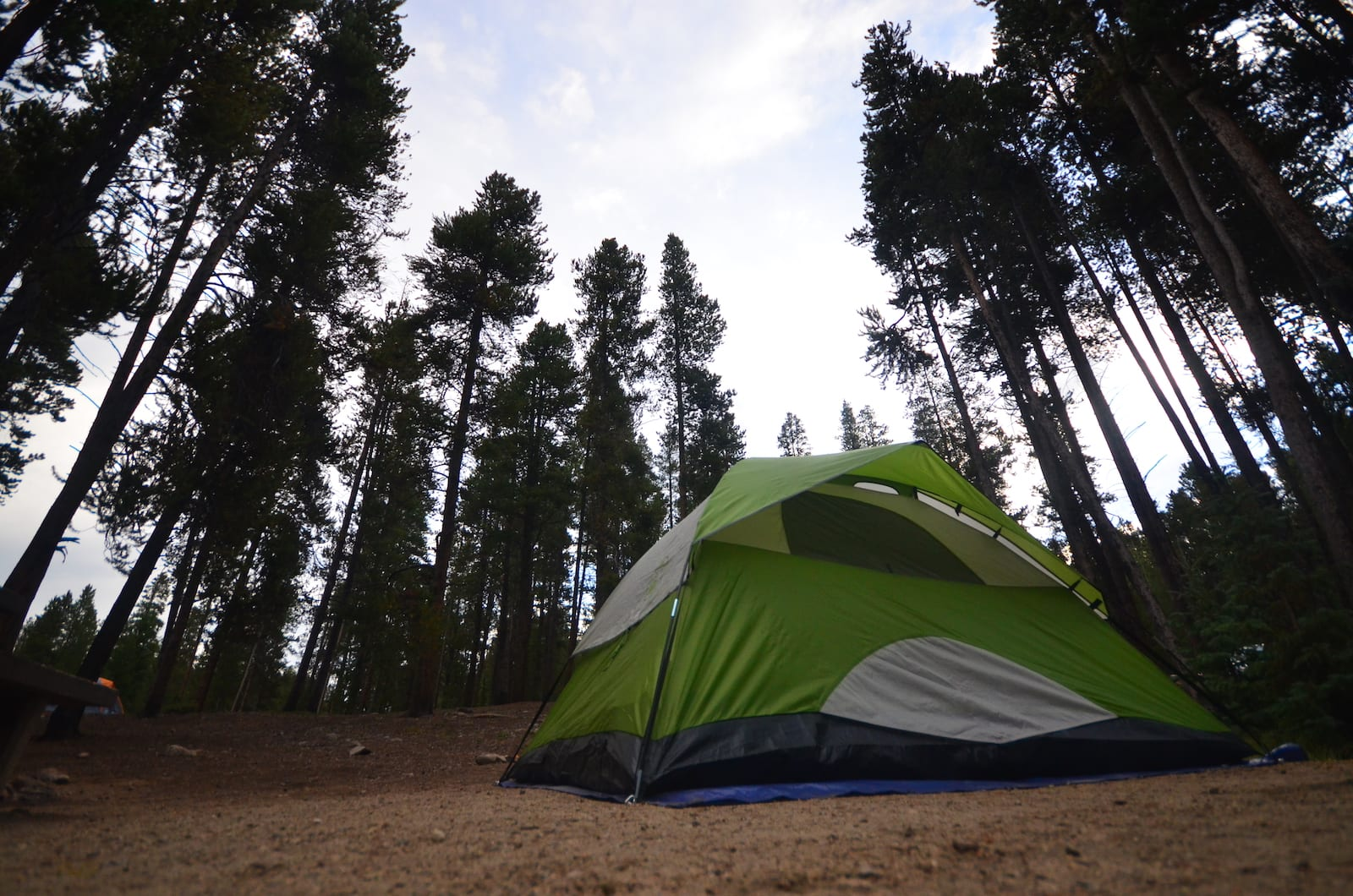 Tent Camping Turquoise Lake Leadville CO