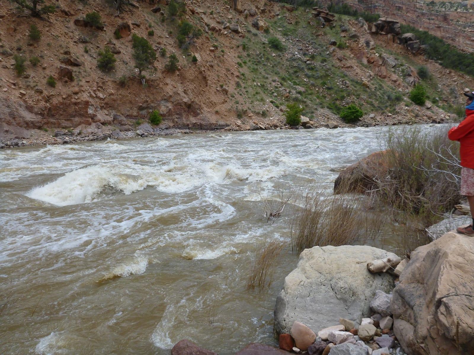 Yampa River Yampa Canyon Whitewater Moffat County Colorado