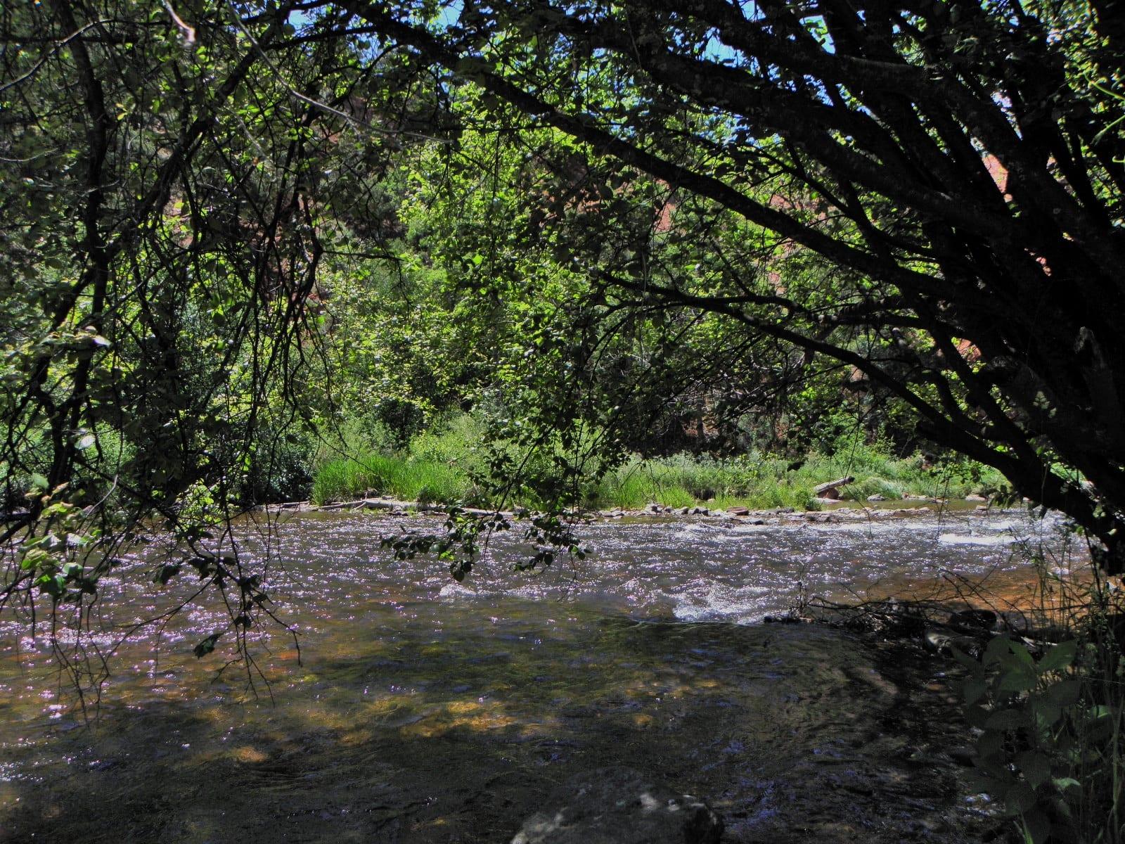 Fryingpan River, CO