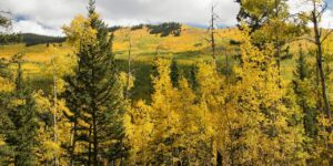 kenosha pass in the fall