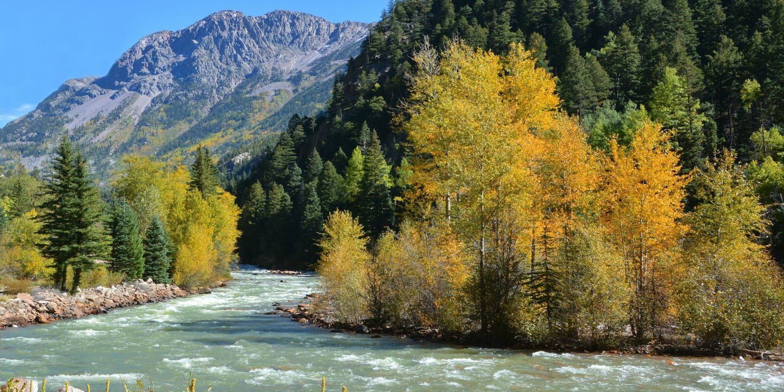 Animas River Durango CO Early Fall Colors