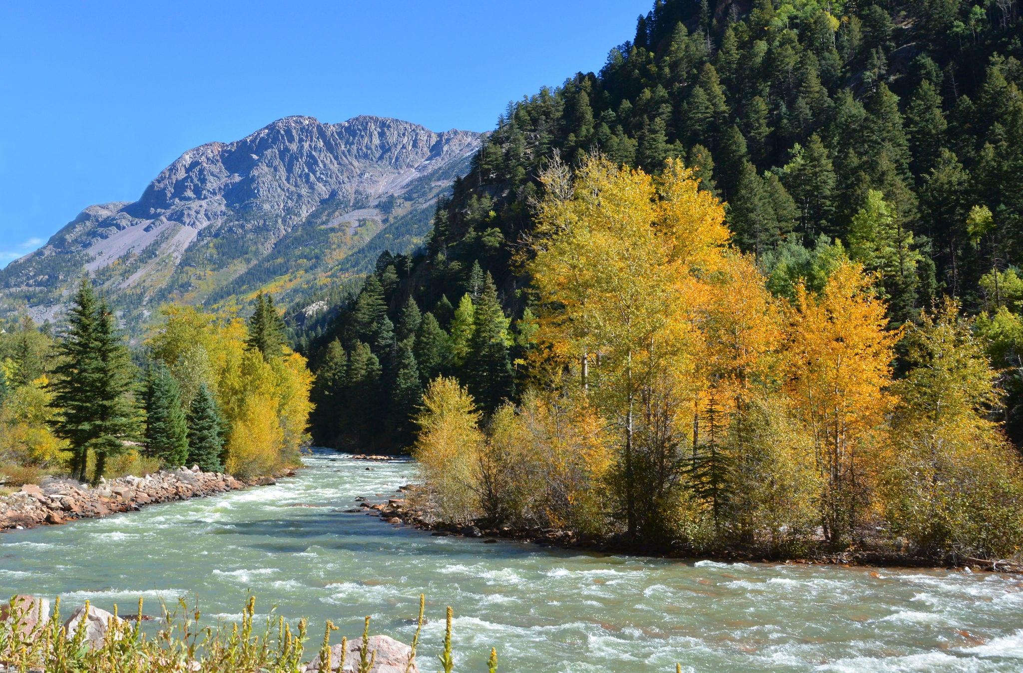 Animas River Durango CO Early Fall Colors