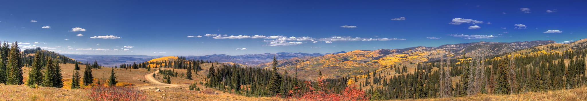Buffalo Pass Fall Colors Panorama Colorado