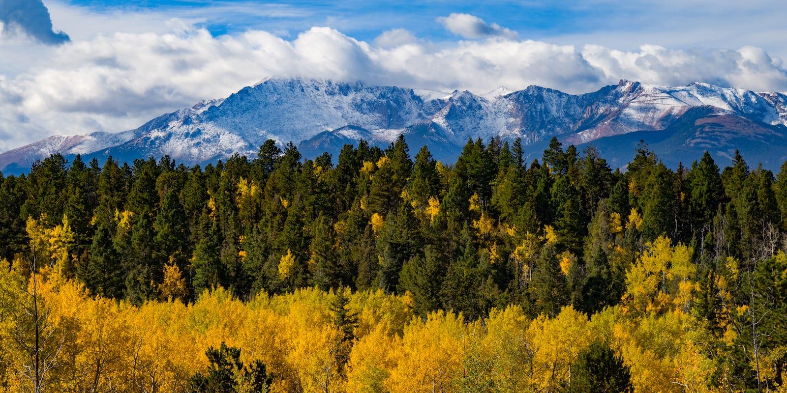 Chipita Park Colorado Fall Colors
