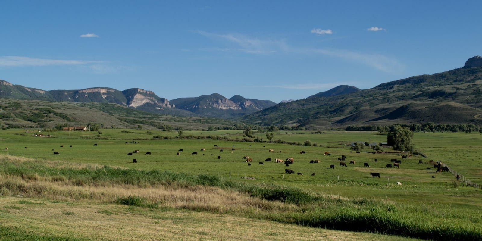 Cimarron CO US-50 Cattle Ranch