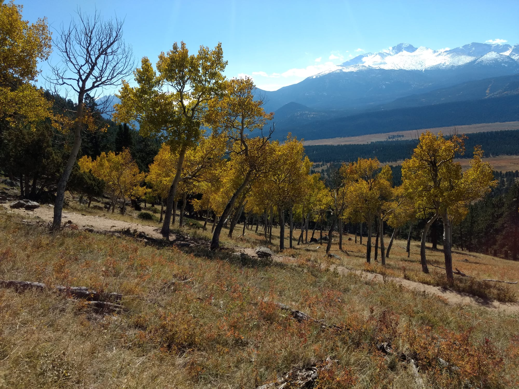 deer mountain rocky mountain national park