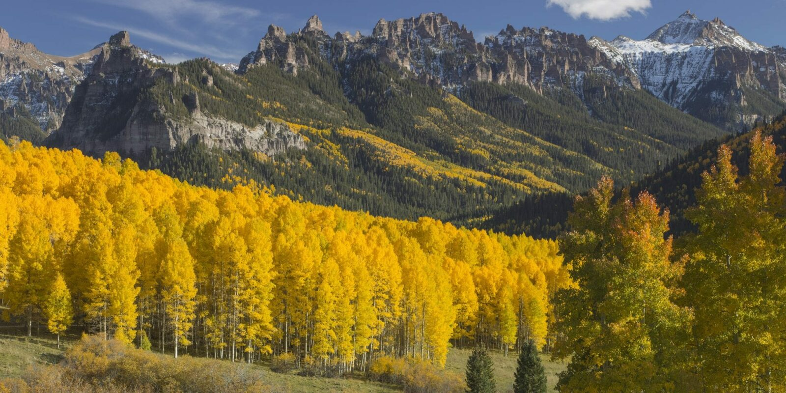 fall colors in rocky mountain national park