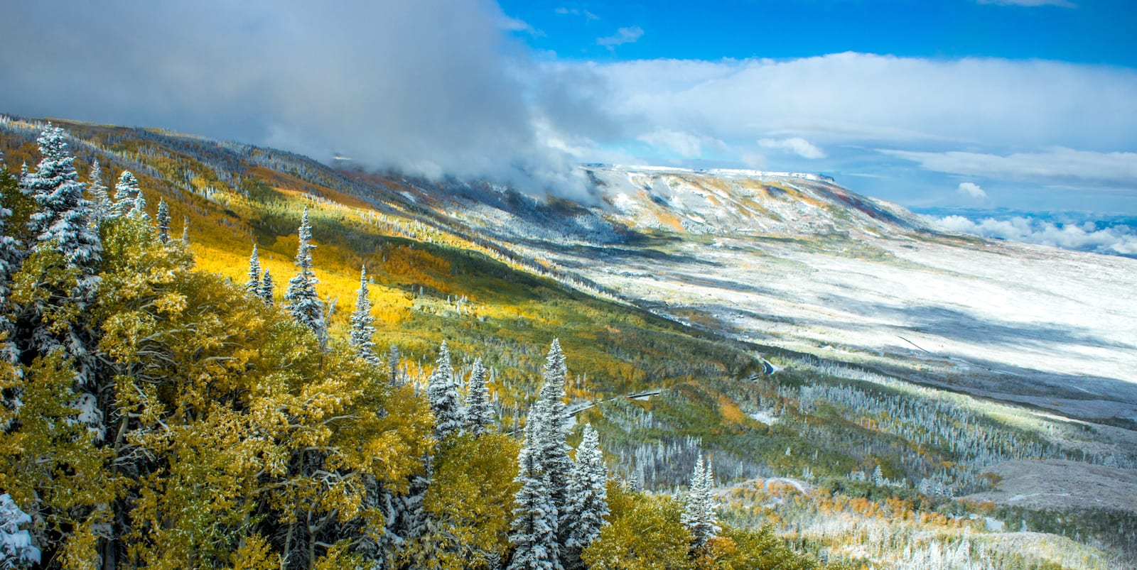 Grand Mesa Colorado Fall Snow