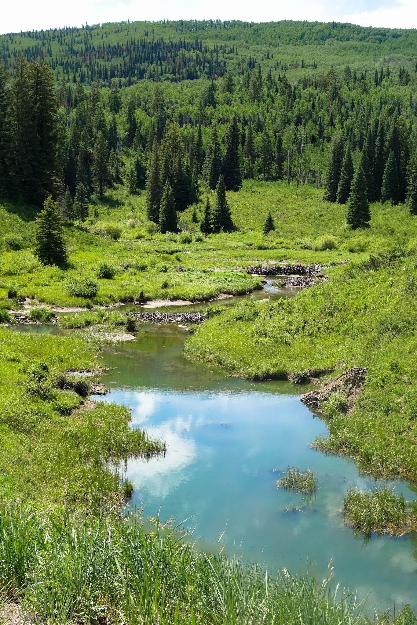 McClure Pass Colorado Beaver Ponds
