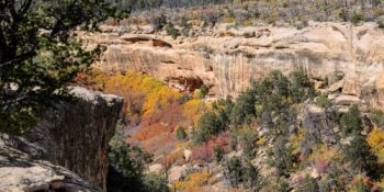 Ancient Cliff Dwellings Autumn Colors Mesa Verde National Park Colorado