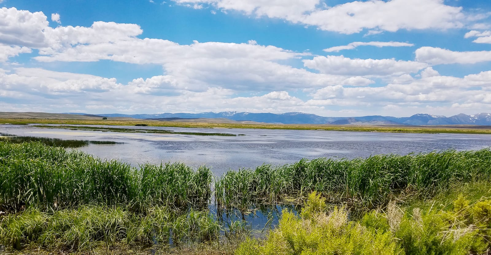 Arapaho National Wildlife Refuge North Park Colorado