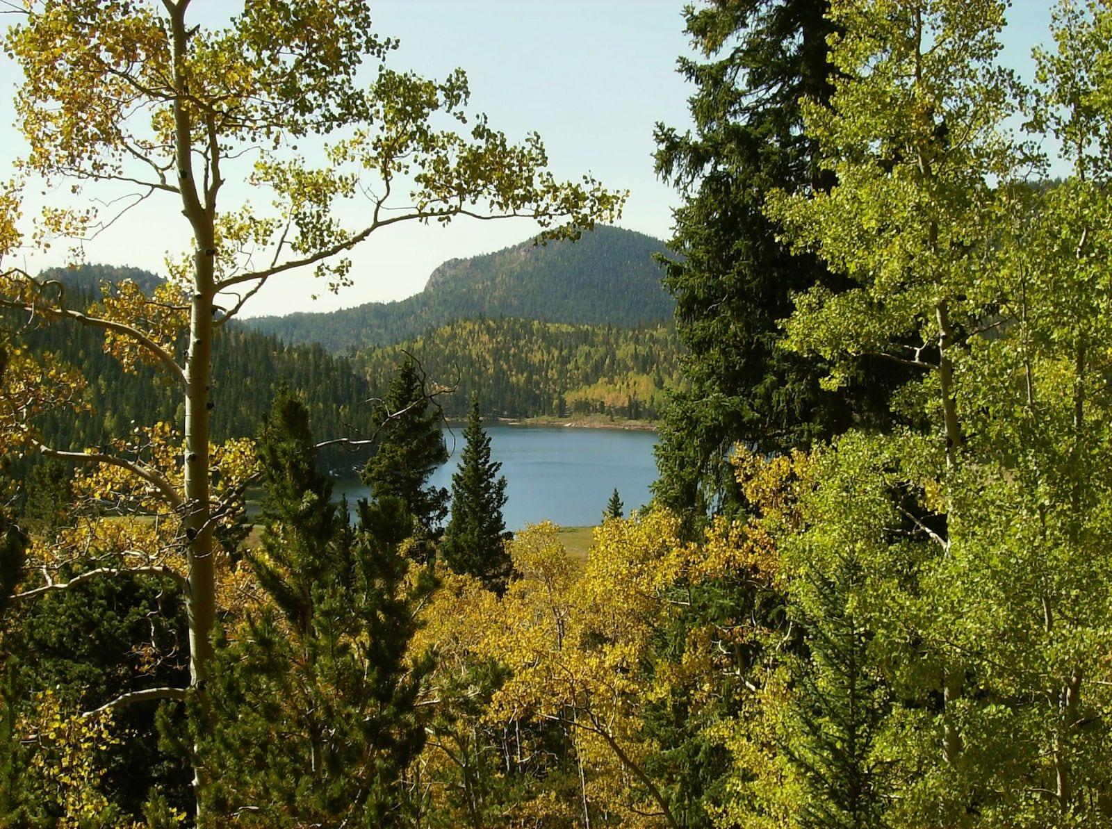 Skaguay Reservoir Victor CO Fall