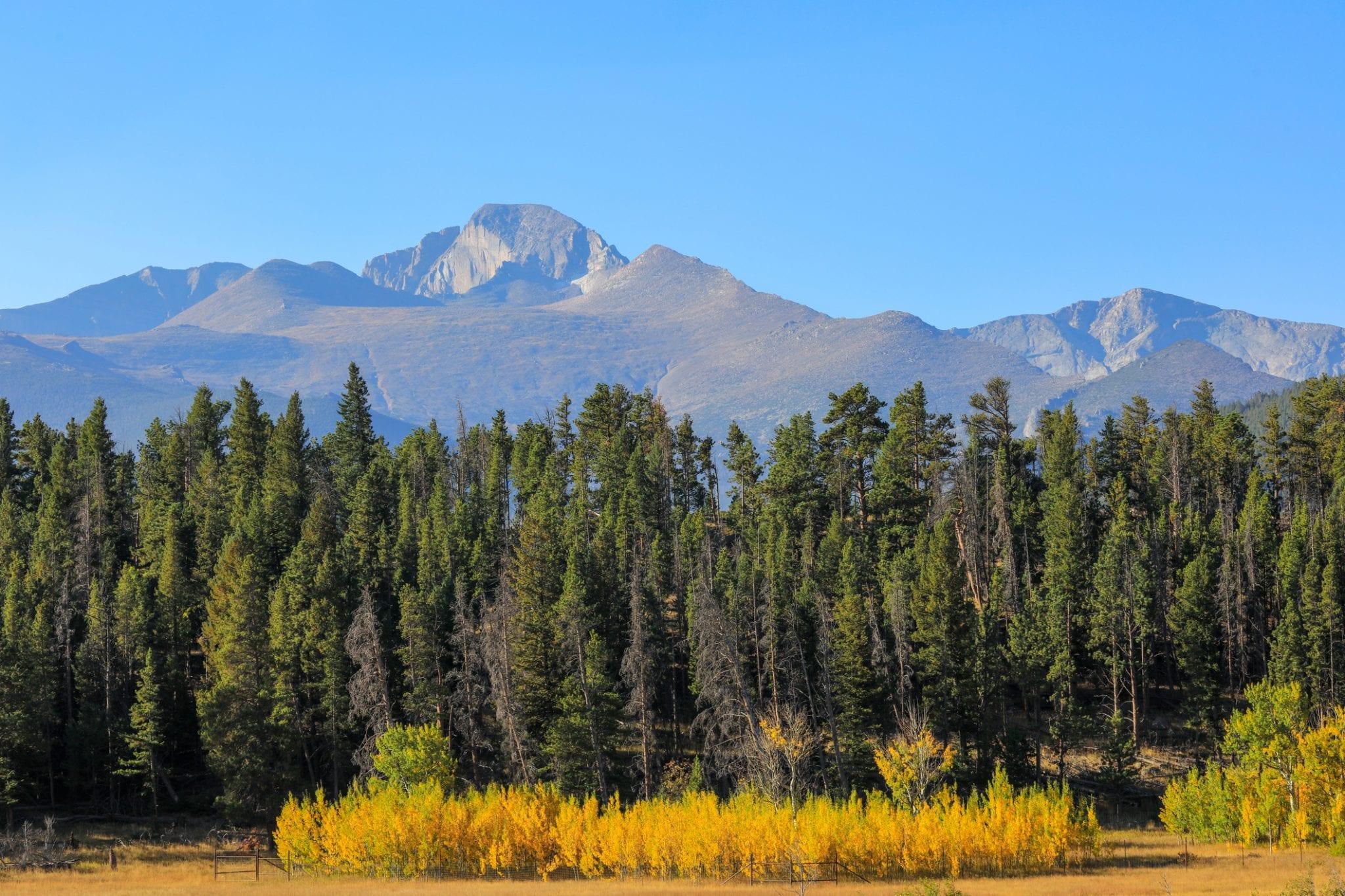upper beaver meadows rocky mountain national park