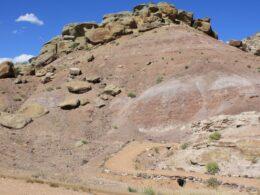 Dinosaur Hill in Fruita, CO