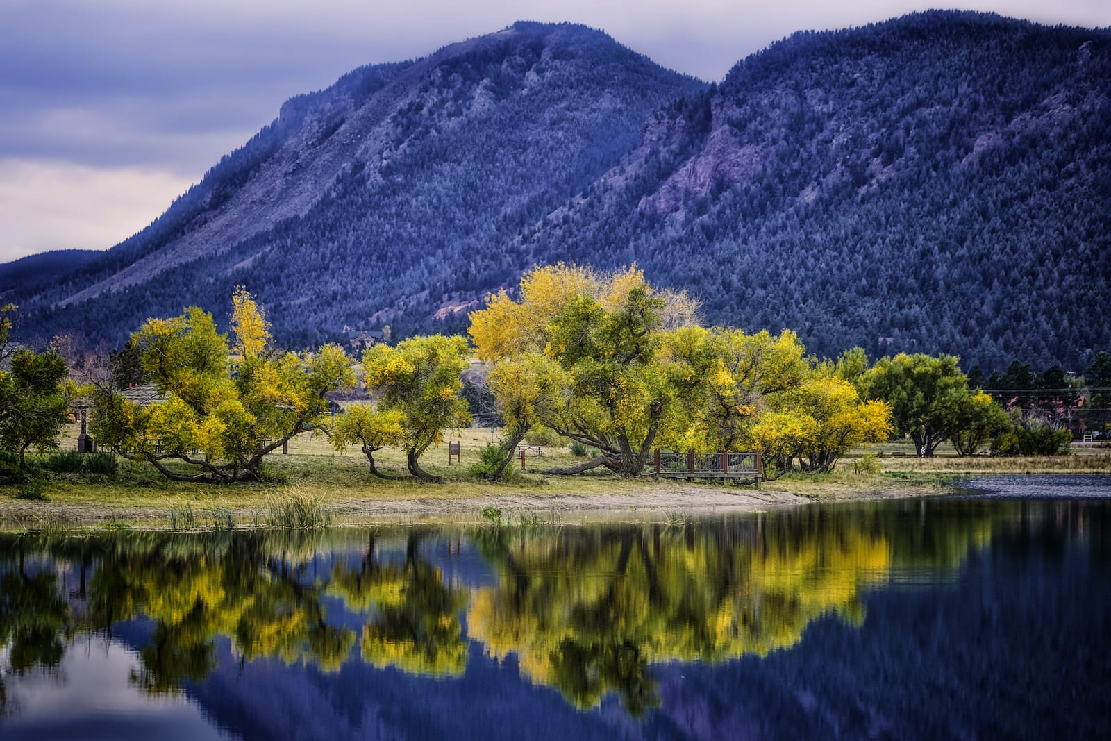 Palmer Lake Fall Foilage, CO