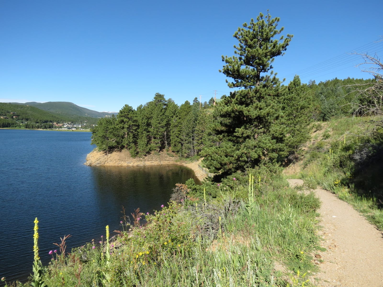 Barker Meadow Reservoir Nature Trail Nederland CO