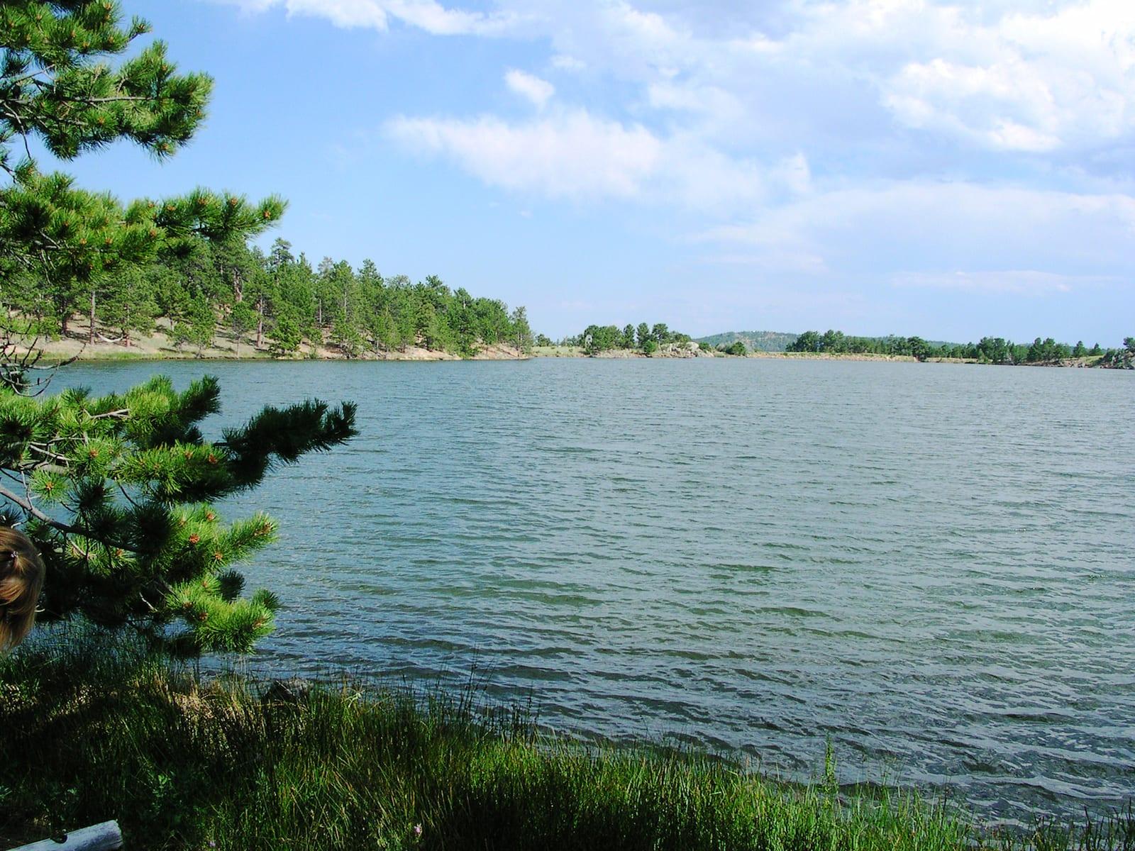 Gold Lake Ward CO