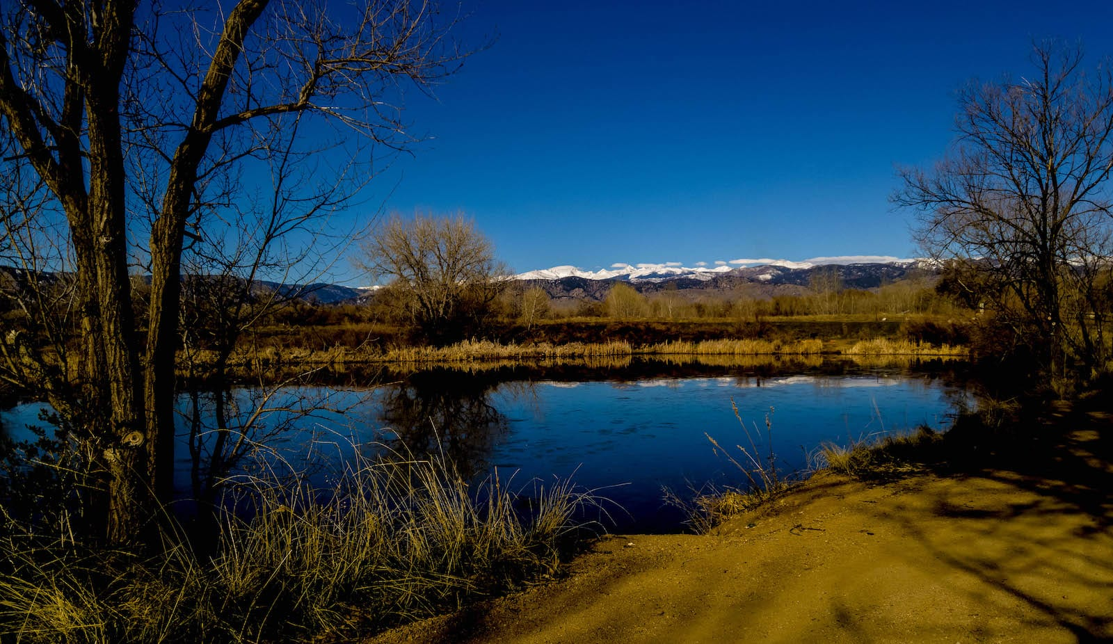 Walden Ponds Wildlife Habitat Boulder CO Spring Morning