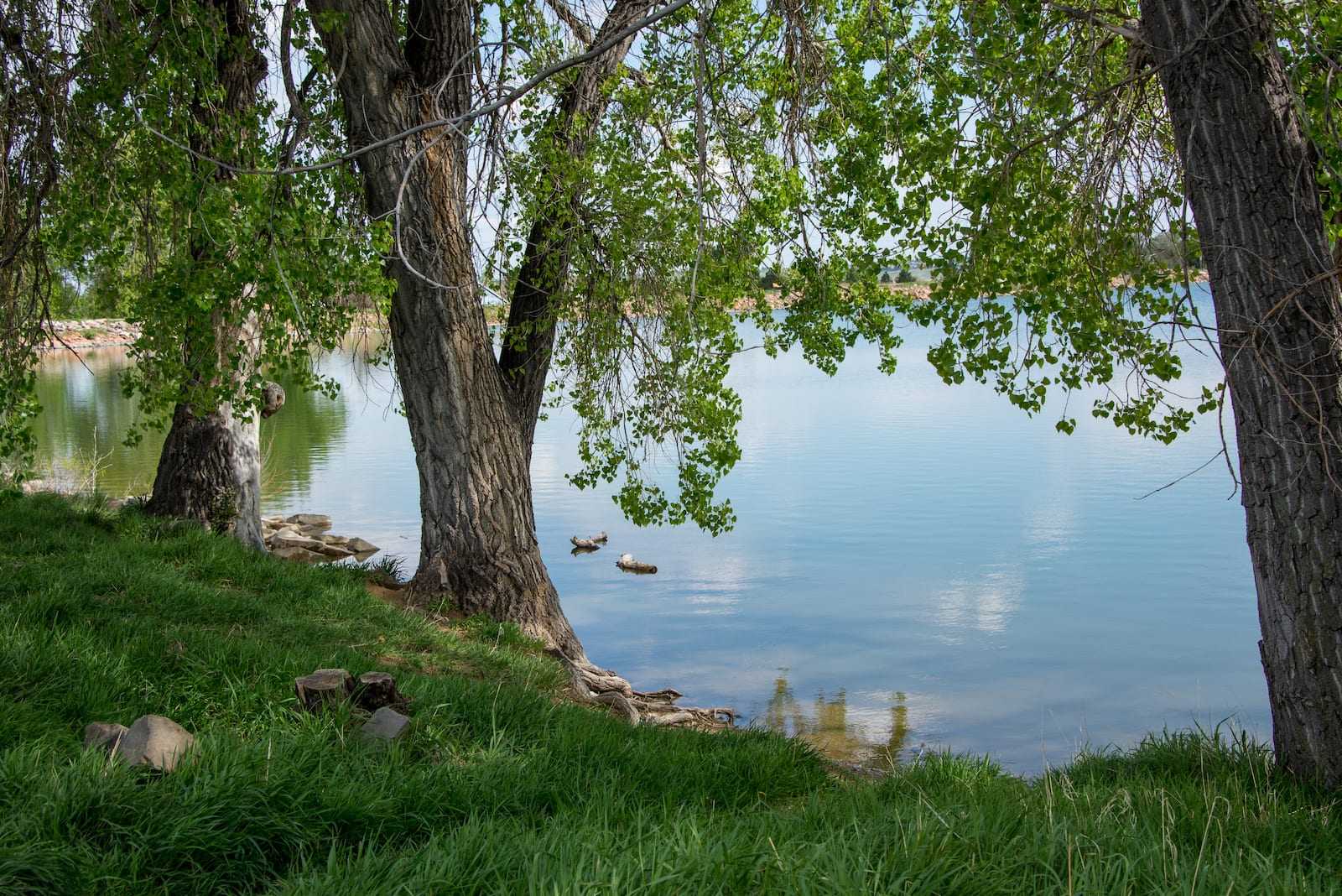 Waneka Lake Park Lafayette Colorado