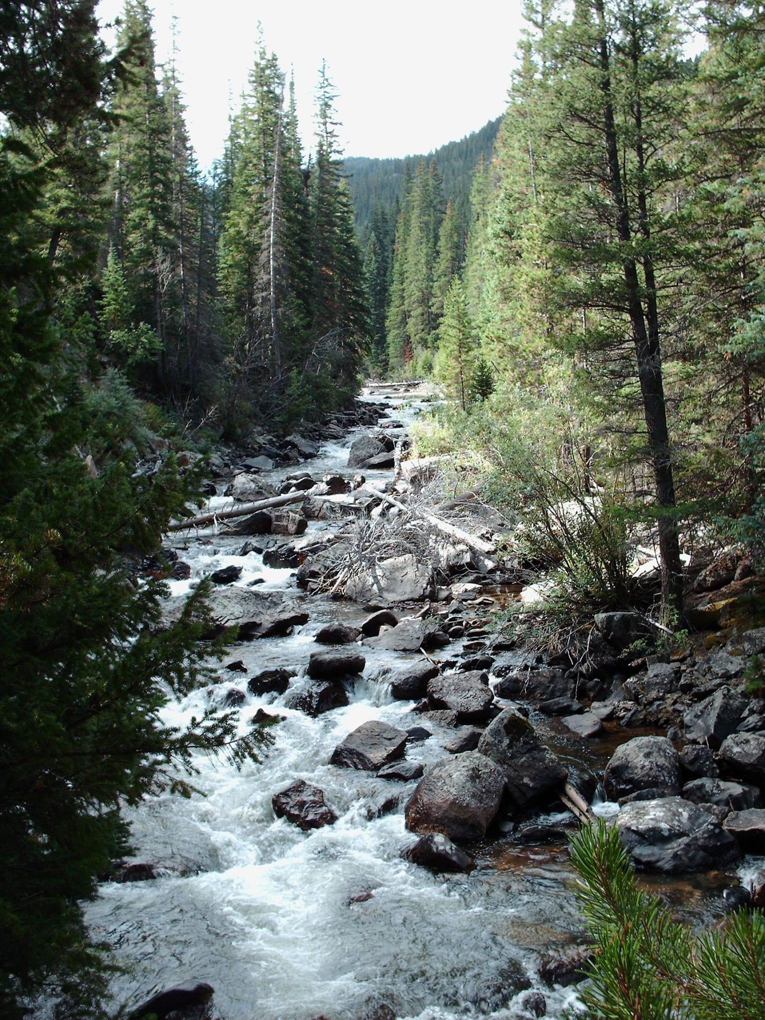Cache La Poudre River Rapids