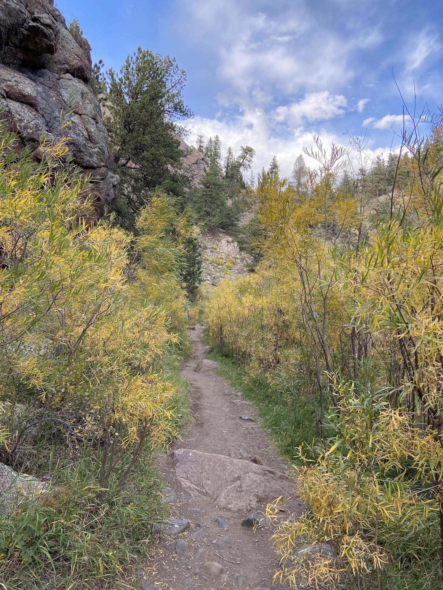 Autumn Guffey Gorge Hiking Trail