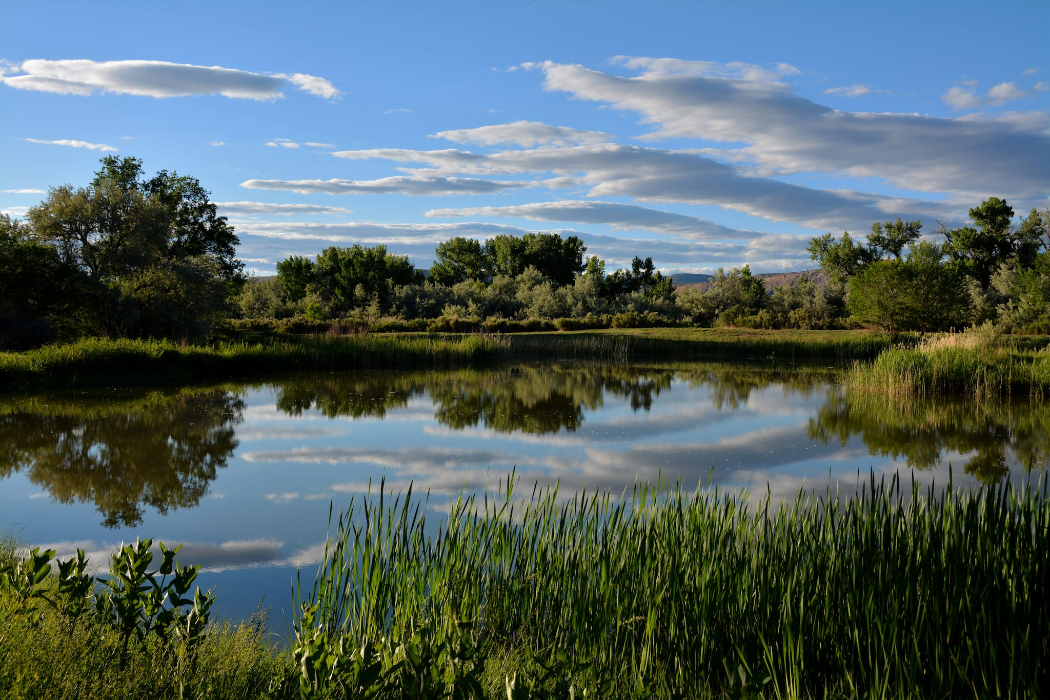 Rangely Camper Park Colorado Lake