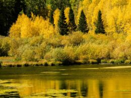 Priest Lake, Colorado