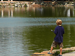Sheldon Lake, CO