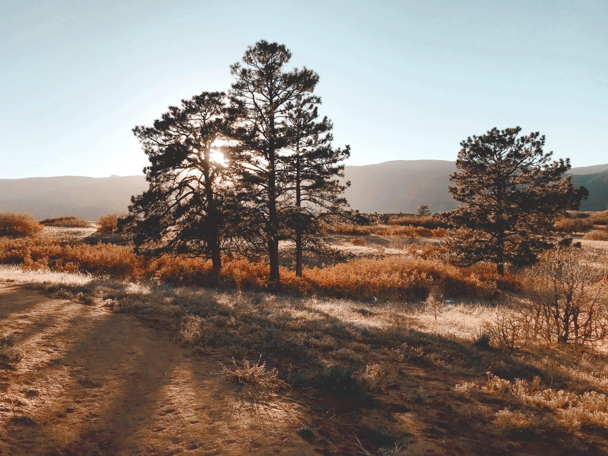 image of sandstone ranch
