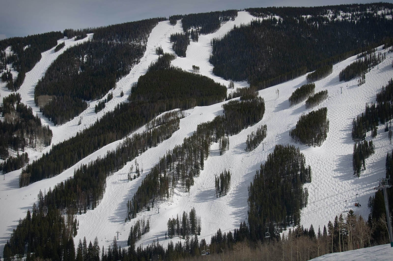 Beaver Creek Ski Resort Trails