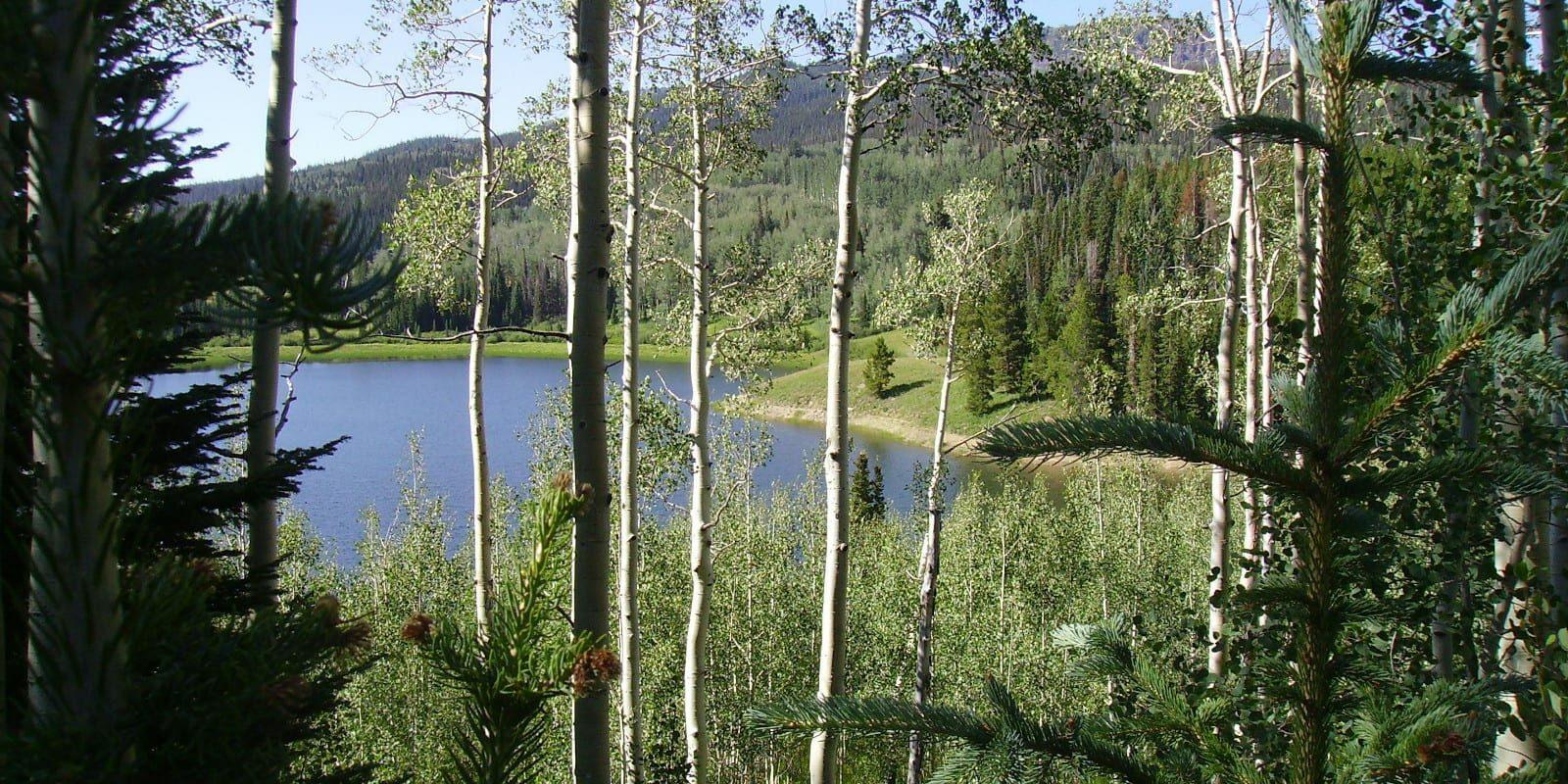 Chapman Reservoir Yampa Colorado