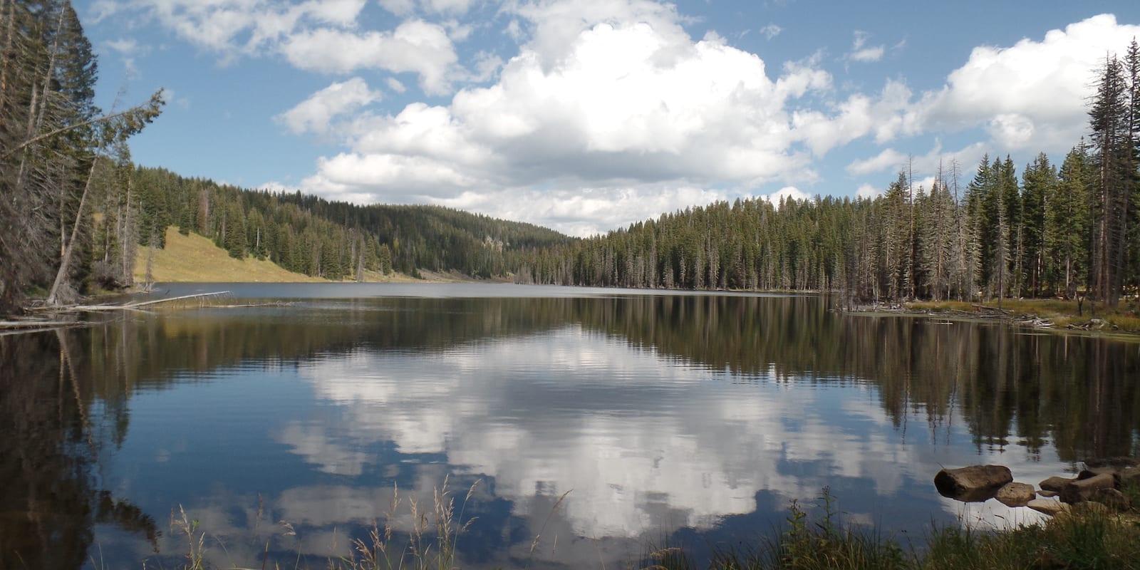 Crag Crest Trail Grand Mesa National Forest