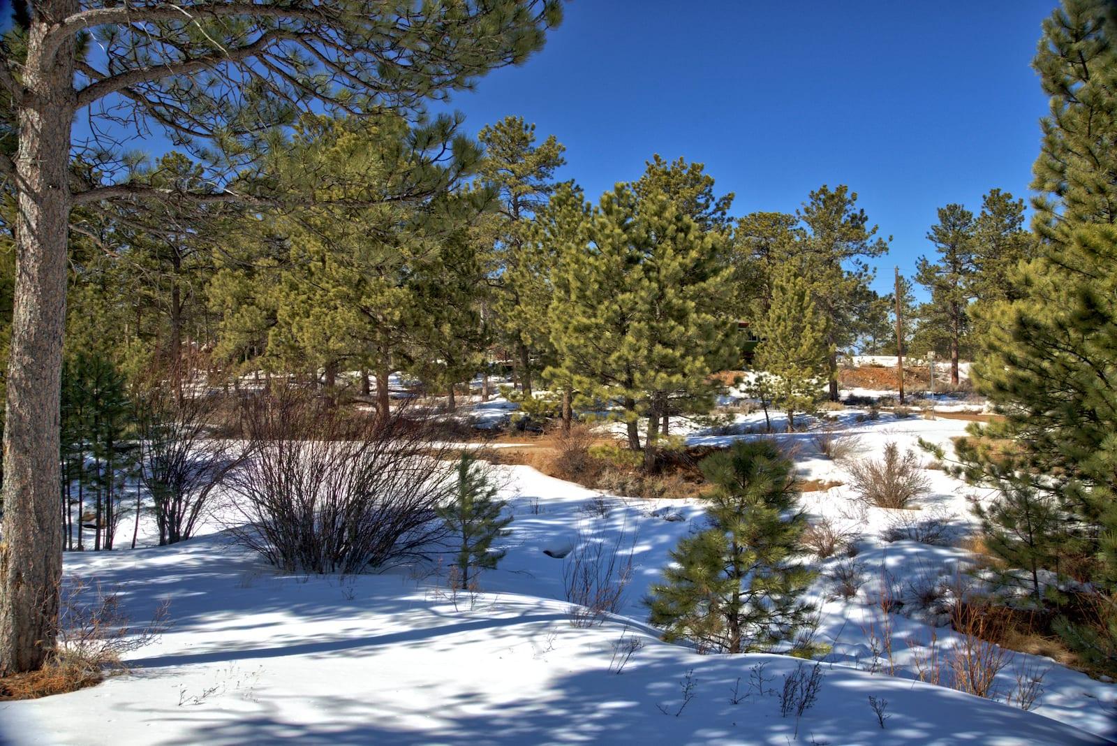Dowdy Lake Campground Winter Colorado
