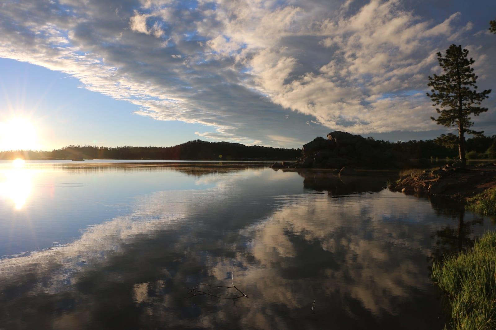 Dowdy Lake Sunrise with Evergreen Tree Colorado