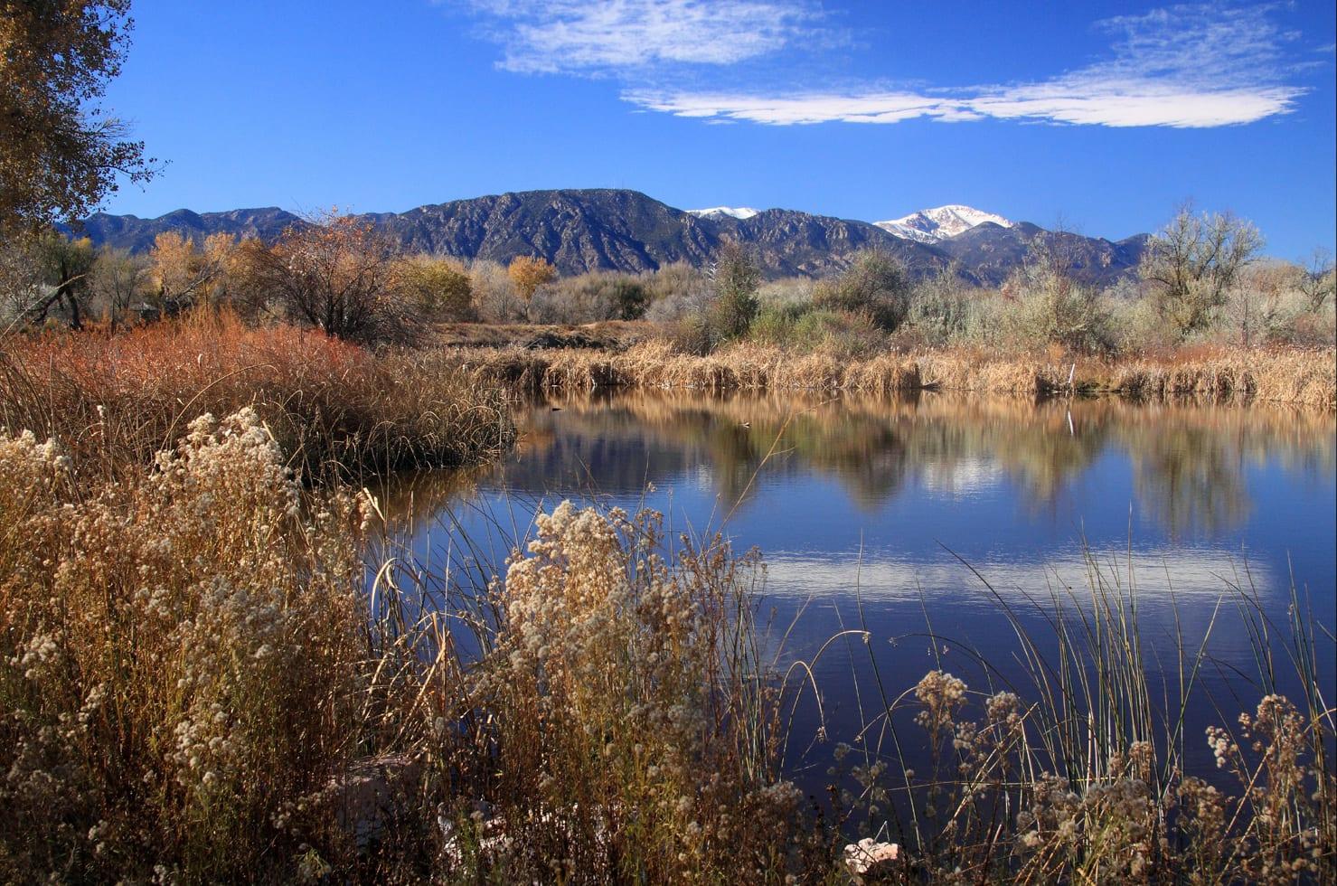 Fountain Creek Regional Park Fishing Pond Colorado