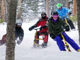 Rogers Snowbike Rentals Breckenridge Colorado Trees