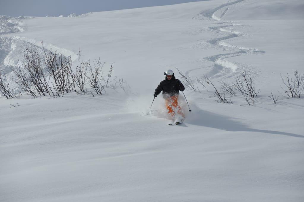 Ski Lingo Champagne Powder Carving Fresh line