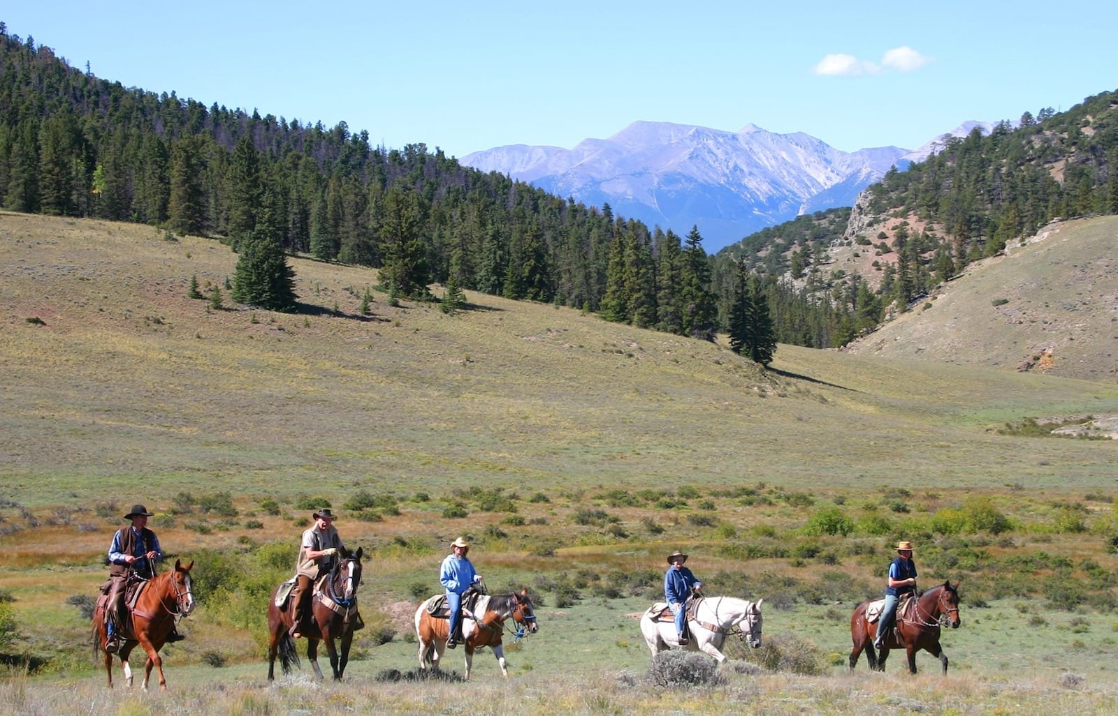 Image of 5 men riding horses in the mountains at Elk Mountain Ranch, CO