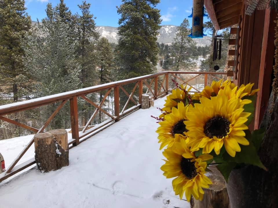 image of deer creek cabin