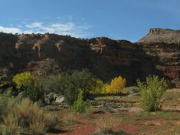 South end of South end of Dominguez Canyon Wilderness Area Colorado