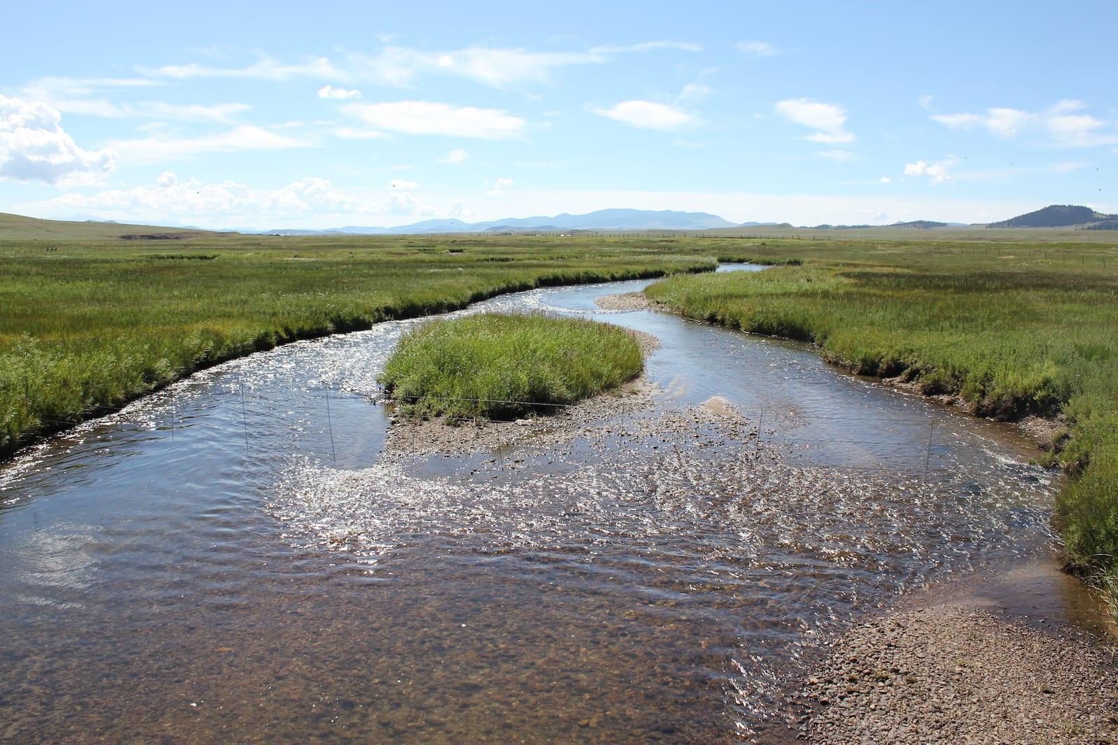 Middle Fork South Platte River Hartsel CO
