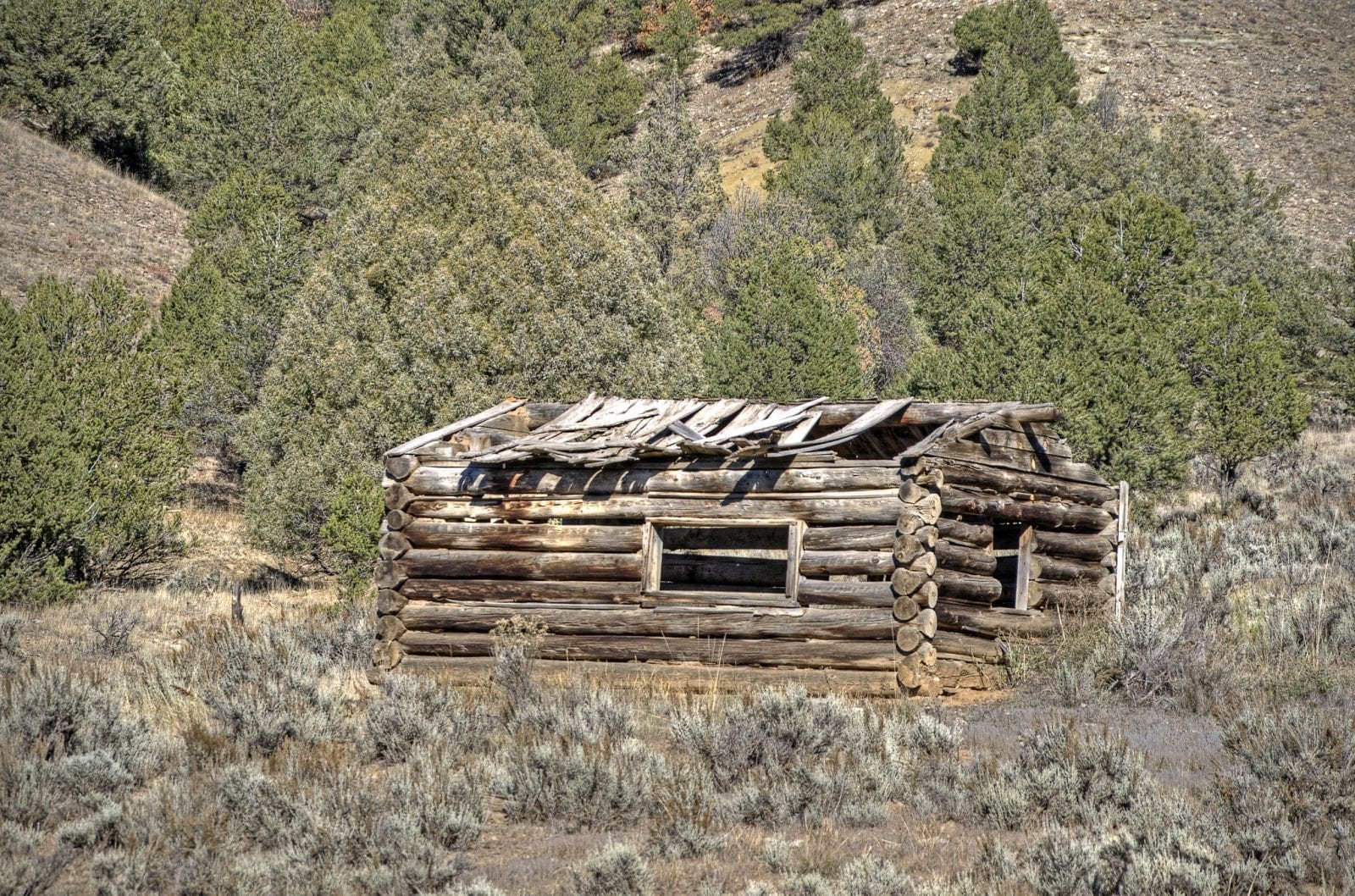 Image of a collapsing log cabin in Dyersville, Colorado